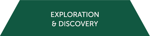 Icon for the Exploration and Discovery cluster