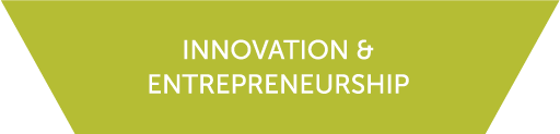 Icon for the Innovation and Entrepreneurship cluster